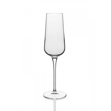 INTENSO-Champagne glass 240ml